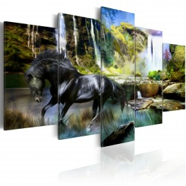 Paveikslas - Black horse on the background of paradise waterfall