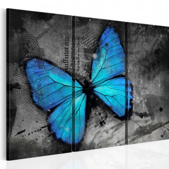 Paveikslas  The study of butterfly  triptych